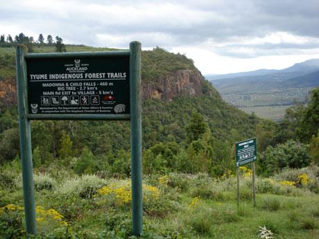 Hogsback Trails